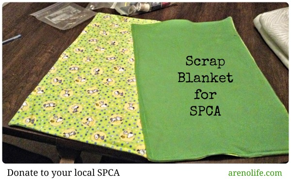 Scrap Blanket for SPCA
